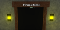 Personal Tunnel