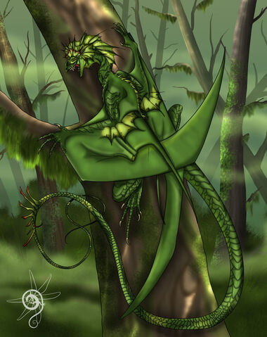 File:Forest Wyvern.jpg