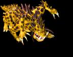 Krallen 3 Animation