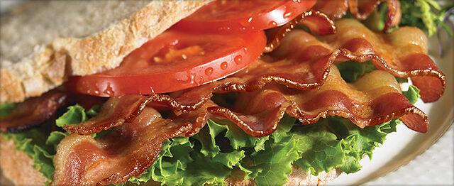 File:Bacon-1.jpg