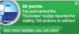 Bestand:Decorator (earned).png