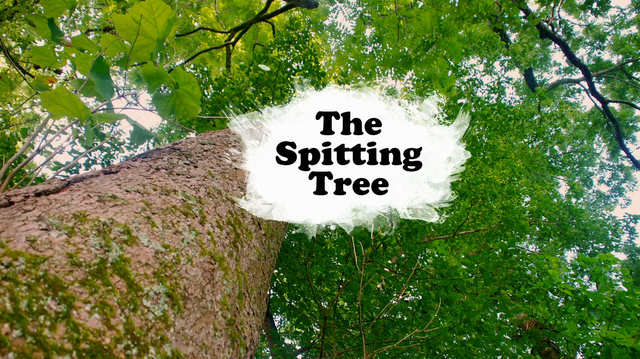 File:The Spitting Tree.PNG