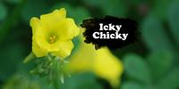 Icky Chicky