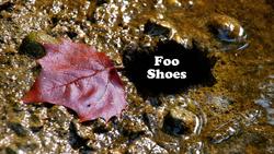 Foo Shoes