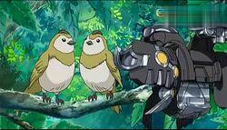 Bird Talk Deleted scene