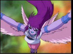 Purple Harpus (2)