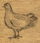 File:Melicamp the chicken2.png