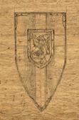 Medium shield2