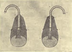Arms - Codex P fol. 70 verso - Schneider 1906