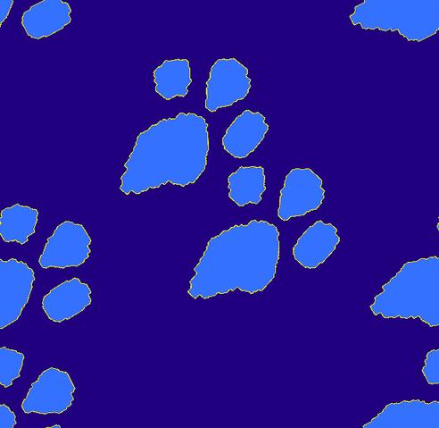 File:Footprint newtest.png