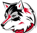 St. Cloud State Huskies