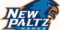 New Paltz State Hawks