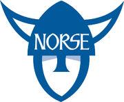 Norse helmet blue
