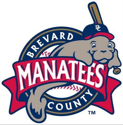 File:Brevard County Manatees.jpg