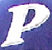 File:Police Baseball Team insignia.png