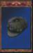 Quickfreeze Cap (Origins)