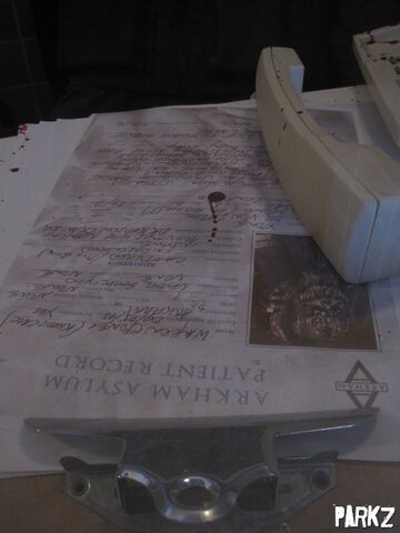 File:Shock Therapy Arkham Asylum IMG 2780.JPG
