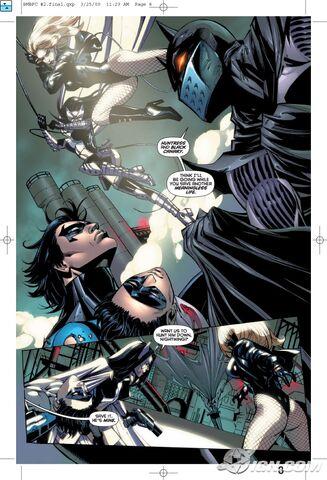 File:Batman-battle-for-the-cowl-20090413023606496.jpg
