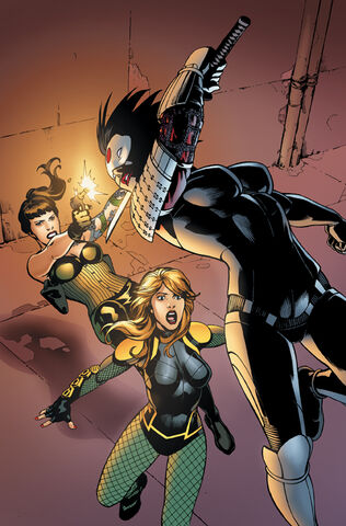 File:Birds of Prey Vol 3-2 Cover-1 Teaser.jpg
