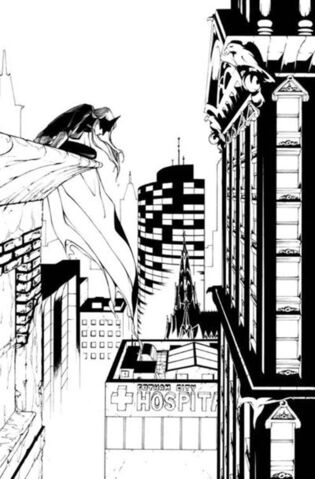 File:Batwoman Vol 1-8 Cover-2 Teaser.jpg