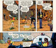 Batman Inc - BatFamily