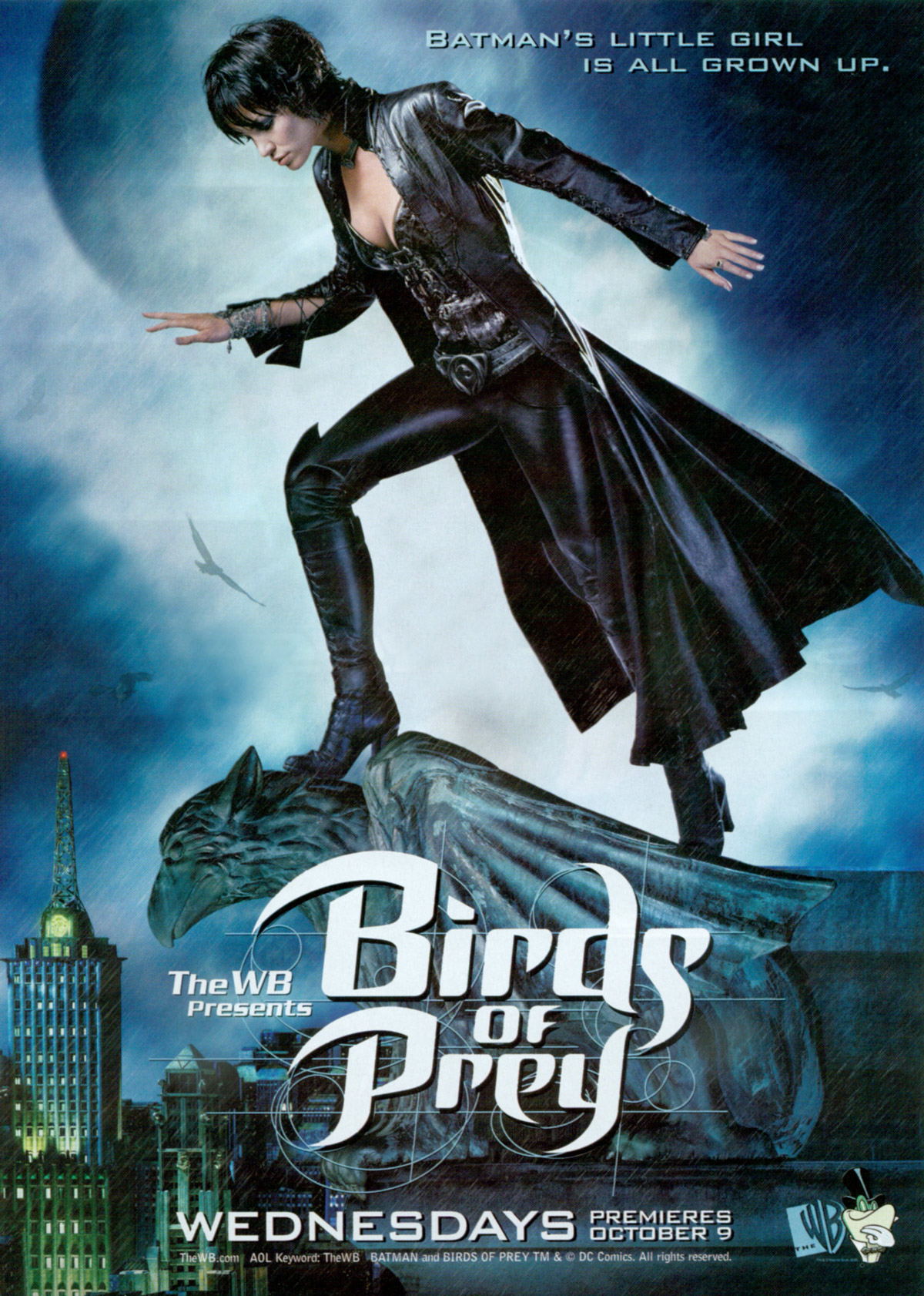 File:Birdsofprey.jpg