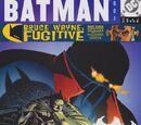 Batman Issue 601