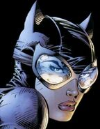 19catwoman