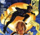 Catwoman (Volume 3) Issue 66
