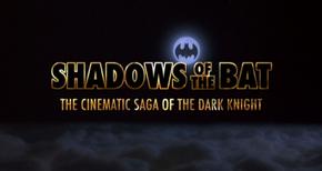 Shadows of the Bat
