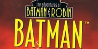 The Adventures of Batman & Robin: Batman the Dark Knight