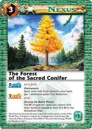 Sacredconifer2