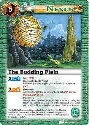 Buddingplain2