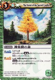 Sacredconifer1