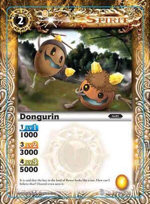 Dongurin2