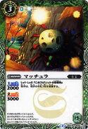 BSC20-BS01-056