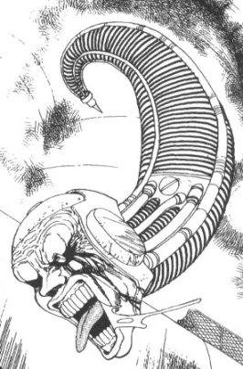 File:BAA01 75 Maggot Body.jpg