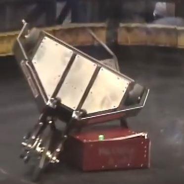 File:Mr. Chuck a lot hoists Terminal Velocity over its back.JPG