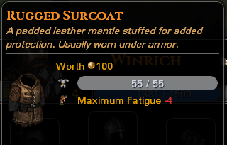 File:RuggedSurcoat.PNG