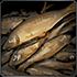 Файл:Fish.png