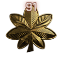 File:Rank 91.png