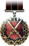 PDW Medal.jpg