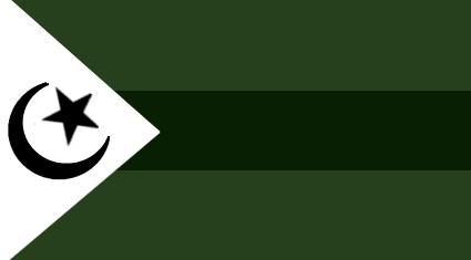 File:Insurgent Forces Flag.png