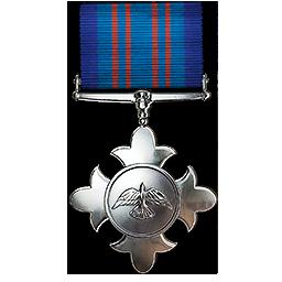 File:Avian Cross Medal.png