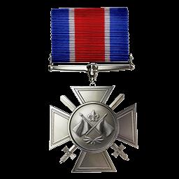 File:Medal of La Salle Medal.png
