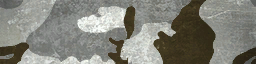 File:BF4 ERDL Snow Paint.png