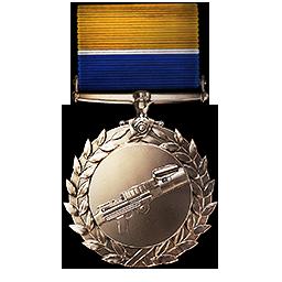 File:Support Order of Valor Medal.png