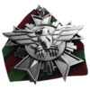 Commander Gunship Medal