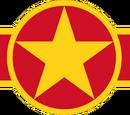 Народные военно-воздушные силы Вьетнама