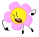 FlowerIDFBIntro2